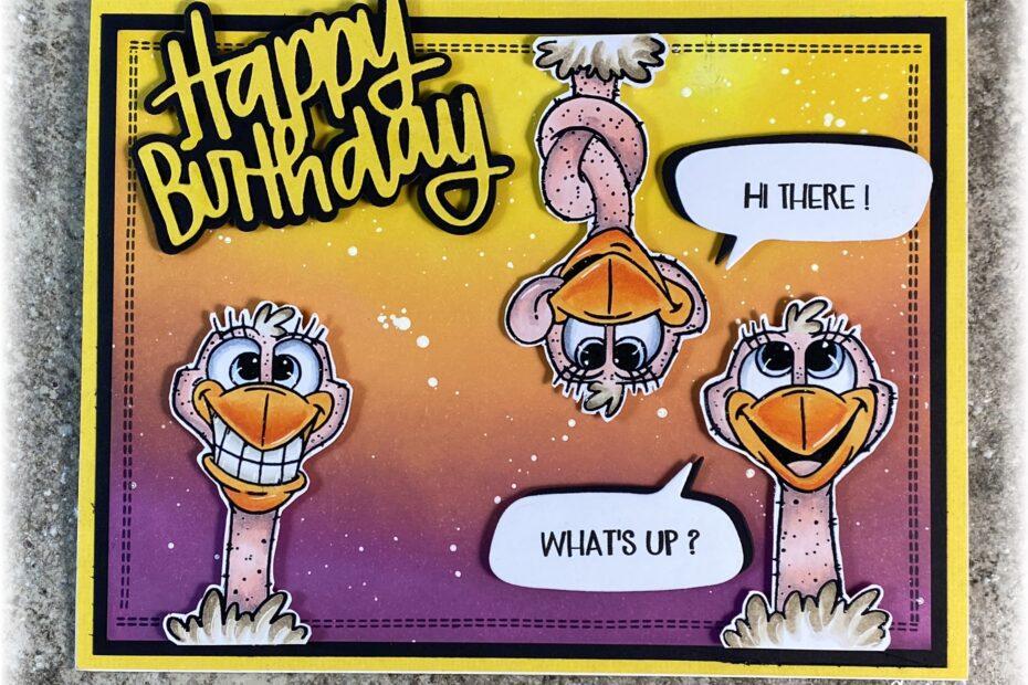 Birthday Ostriches